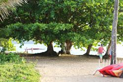 Beach at Hanalei Bay