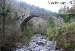Ponte Dei Mulini