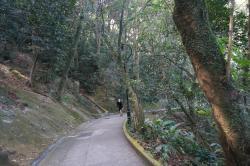 Old Peak Road