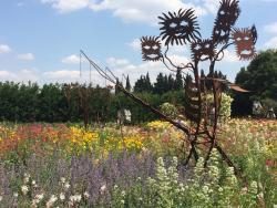 Jardin d'Alcinoos