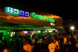 Green Paradise Disco