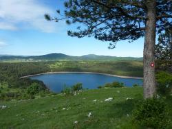 Lake Petelinje