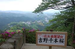 Hanayagura
