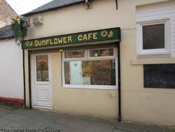 ‪The Sunflower Cafe‬