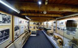The Polar Museum (Polarmuseet)