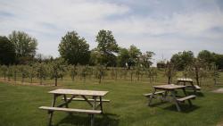 Ocala Winery