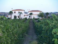 Bodega Garcia Hidalgo
