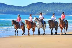 Equathon Horse Riding Tours - Day Tours