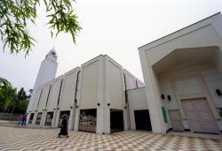 Grande mosquee de Lyon