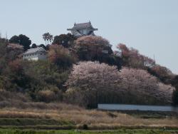 Awaji Castle