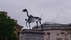 Gift Horse on the Fourth Plinth