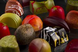 Signature Confections Artisan Chocolates