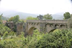 Ponte Novu