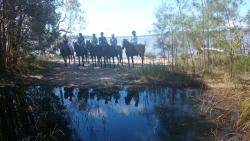 Noosa Horse Riding