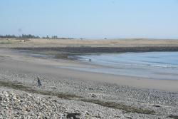 Pond Cove Beach and Nature Preserve