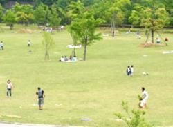 Hitokura Park