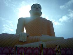 Srilanka Coco Tours