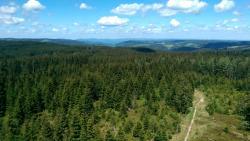 Stoecklewaldturm