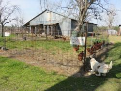 Hillcrest Farm