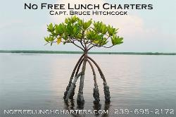 No Free Lunch Fishing Charters