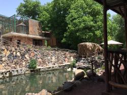 Jambo Exotic Park & Restaurant