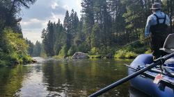 Montana Hunting Fishing Adventures