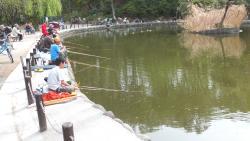 Akatsuka Tameike Park