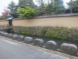 Ono Shoyosui