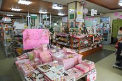 Wakayama City Tourist Souvenir Center