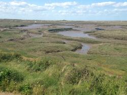 View from the restaurant over the marshes (tide out)