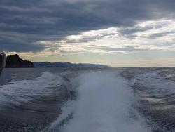 Dive Passion Portofino