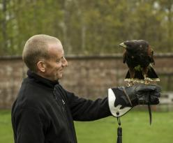 Lakeland Bird of Prey Centre