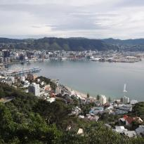 Wellington City Scenic Tours