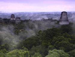 Kaminos Mayas- Day Tours