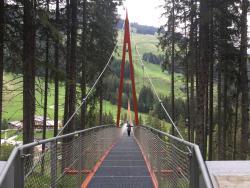 Baumzipfelweg