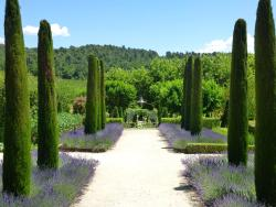 Discover Provence-Day Tours