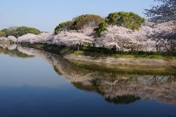 Tachioka Nature Park
