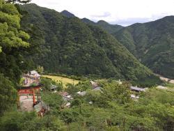 Nachi Primeval Forest