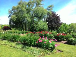 Oshawa Valley Botanical Gardens
