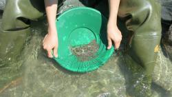 Prospecting pan