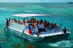 Island Dream Tours