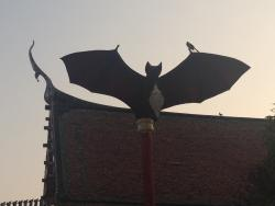 Bat Cave at Wat Khao Chong Pran