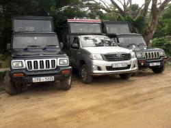 Sasindu Safari Jeep Tours