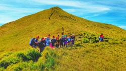 Mt. Pulag National Park