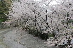 Puing Istana Shingu