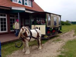 Museums Pferdebahn
