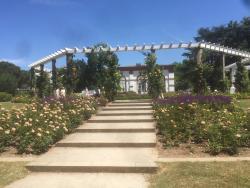 Tropical and Botanical Gardens (Palmengarten und Botanischer Garten)