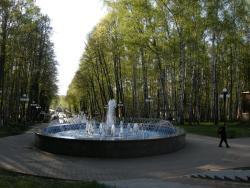 Park Beryozovaya Roshha