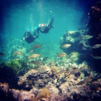 Peter Diving