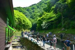 Chihayagawa Masu Fishing Area